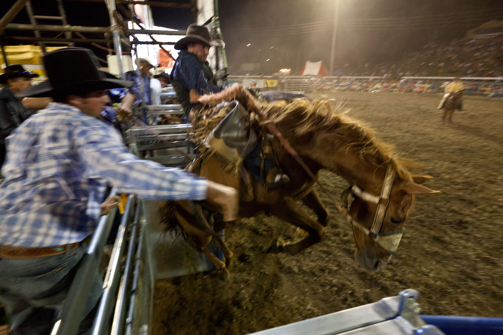 012_MacleanRodeo_MG_4835.jpg